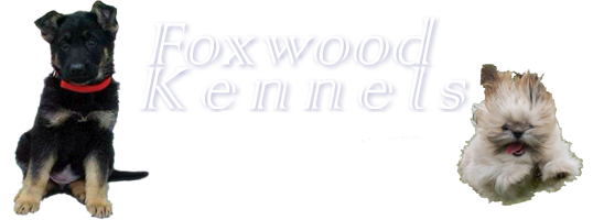 Foxwood Kennels